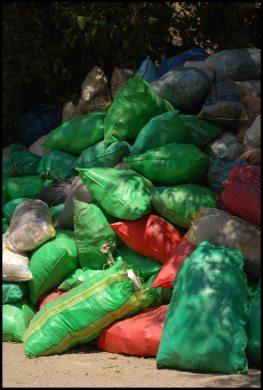 poubelles ou recyclage ?